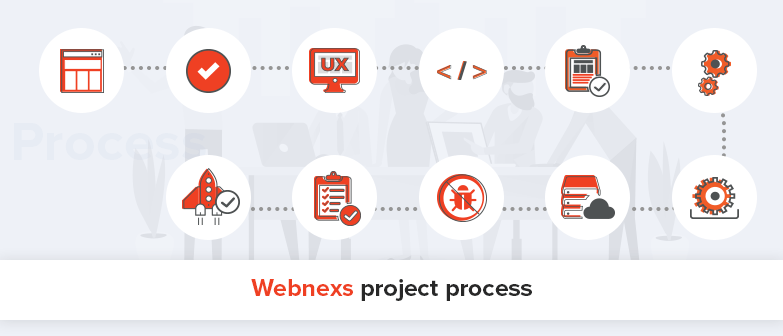 webnexs-project-process
