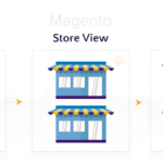 Magento Store, View, and Website