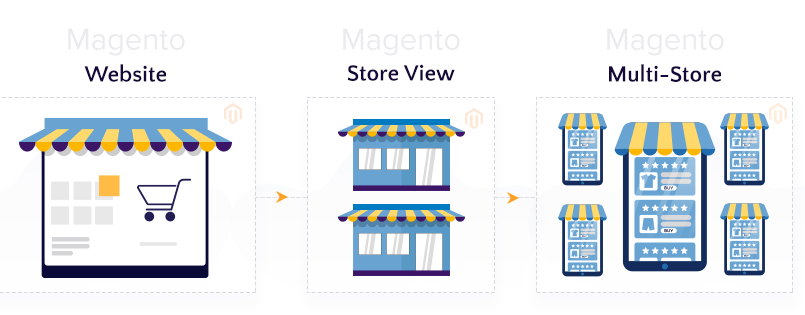 The-Magento-2-Store-View,-Website-and-Multi-Store